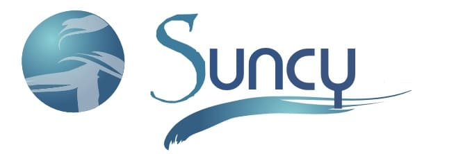 Suncy Solar Boat